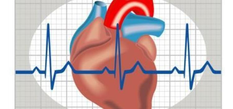 Znalezione obrazy dla zapytania Ocena ryzyka sercowo-naczyniowego